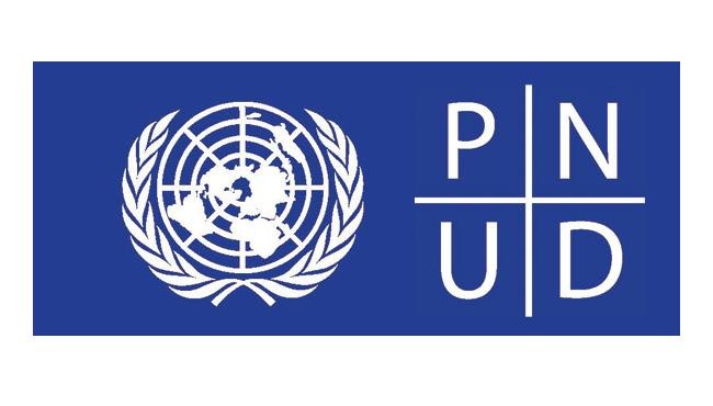 Logo PNUD de la Universidad de los Andes