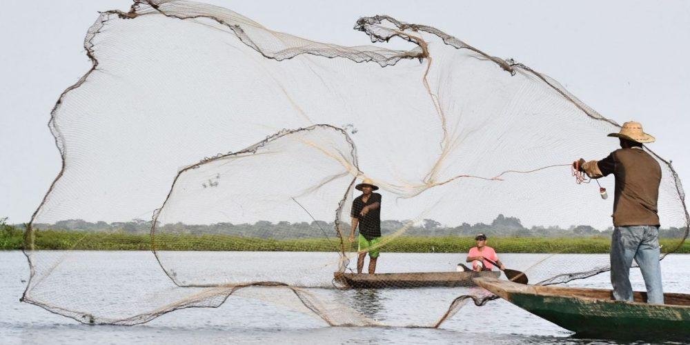 Diana Bocarejo. Pescando. 2018.