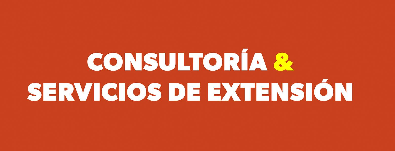 Consultoría y servicios de extensión de la Universidad de los Andes