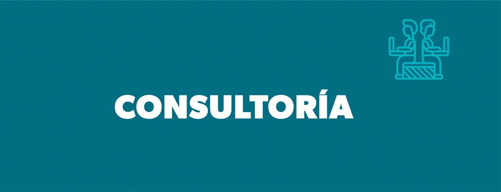 Consultoría de Ciencias Sociales de la Universidad de los Andes