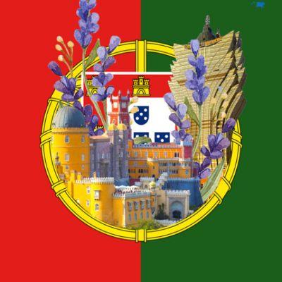 Portugués 4
